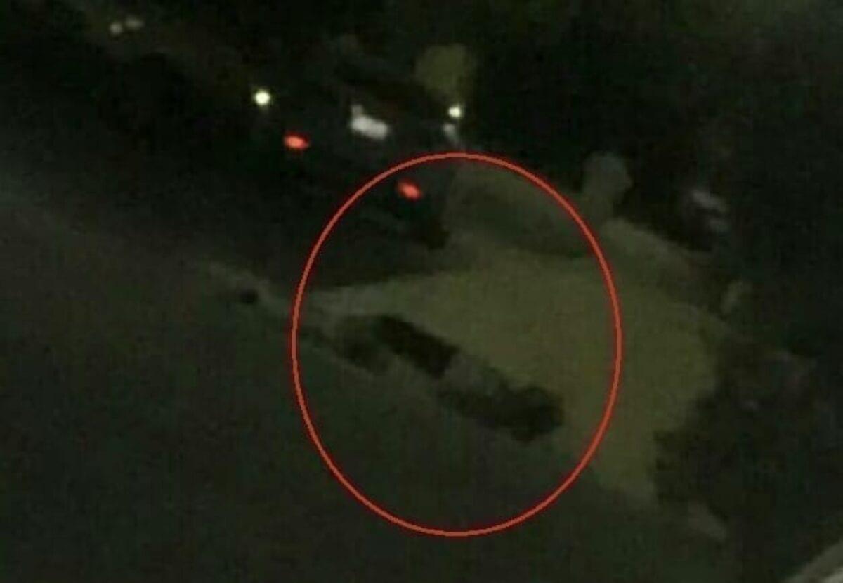 أردني يقتل ابنته وسط الشارع وصرخاتها تتصدر تويتر (فيديو)
