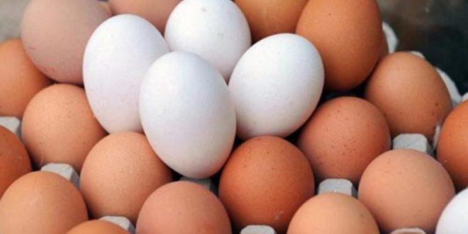في مناطق النظام ...سعر البيضة الواحدة يتخطى الـ100 ليرة