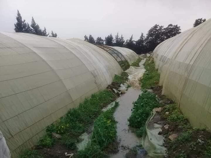 طرطوس .. خسائر بعشرات الملايين جراء العاصفة المطرية