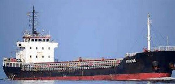 وجهتها إلى سوريا...شحنة مواد كيميائية تصل السواحل اللبنانية