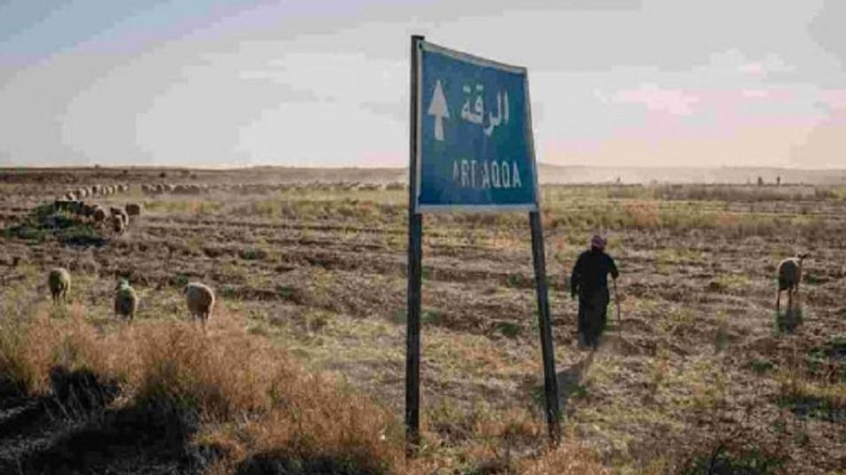 Iranian militias kill shepherds and rob their cattles in the countryside of Raqqa