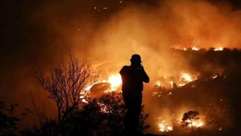 النظام  :أضرار الحريق الذي امتد من لبنان إلى سوريا كبيرة على الغطاء النباتي