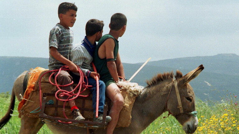 على خطا السوريين ...لبنانيون يشكون ألمهم ويستخدمون الحمير في توصيل أولادهم للمدرسة